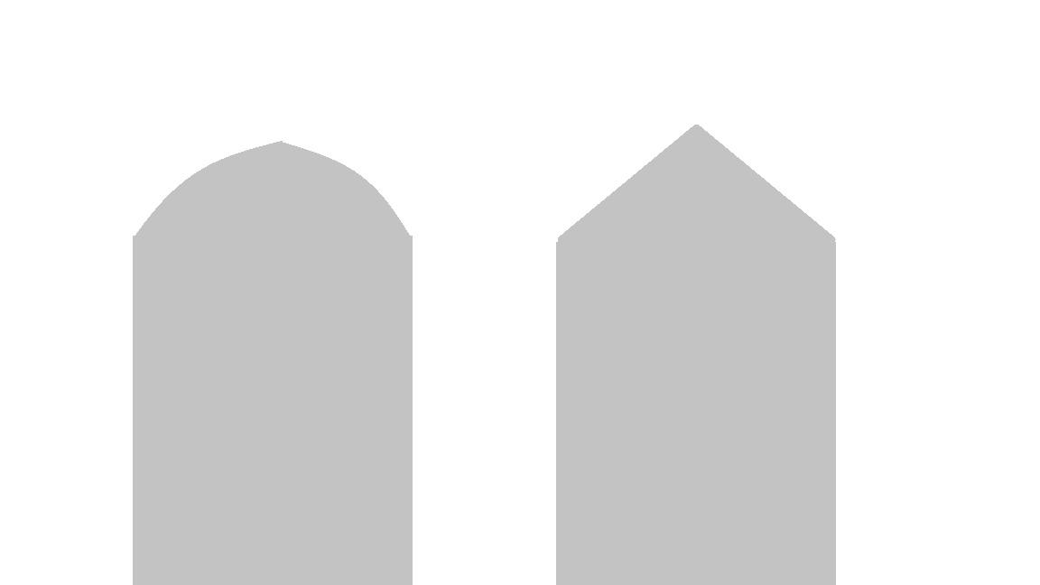 steber za ograjo macesen